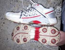 Cray-Nicolls spiked Cricket shoes