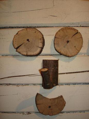 Срезы (спилы) дерева Чернігів - зображення 6