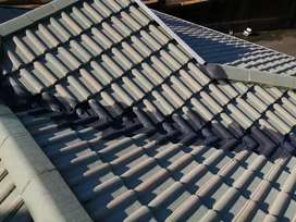 High pressure roof cleaning and property sanitizing
