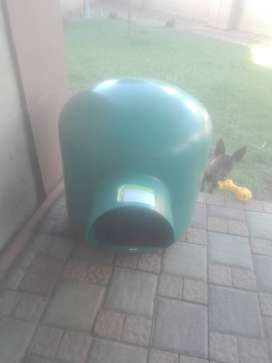 Medium Green Dome Dog House