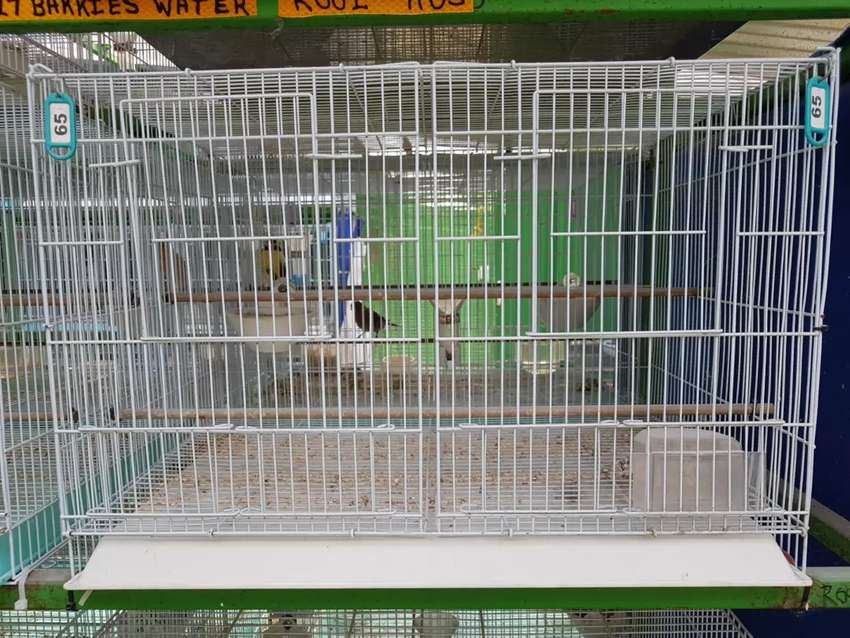 Double breeding cages 0
