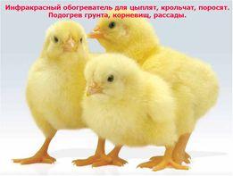 Обогреватель для цыплят, подогрев грунта, обогрев брудера, кроликов