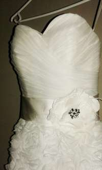 Image of Stunning teacup wedding dress for sale!