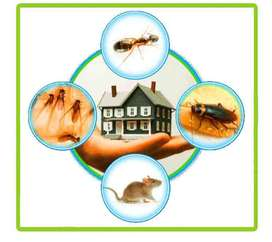 Pest Control Officer needed