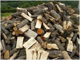 Dąb , buk , jesion,drewno kominkowe , twarde i kaloryczne.