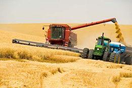 услуги по уборки урожая комбайнами уборка зерновых сои кукурузы подсол