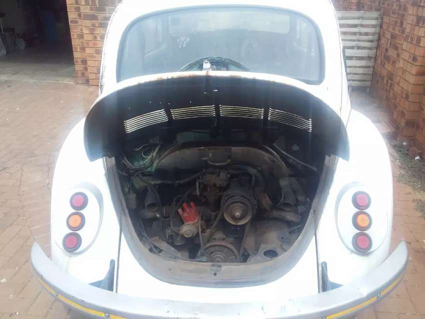 Beetle and fox for sale for R15000 0