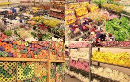 Продажа цветов по оптовым ценам. Склад в Одессе