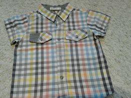 Koszula krotki rekaw firmy Wojcik 80