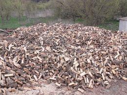 Продам дрова колотые (дуб,граб,береза,ольха,сосна).