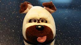 Pies z filmu animowanego