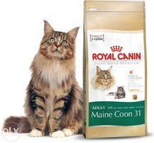 Royal Canin Maine Coon Роял Канин сухой корм для мейнкунов кг