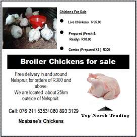Chickens for sale live or prepared
