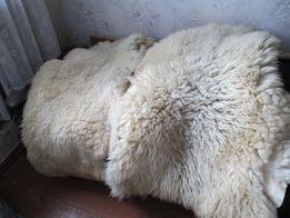 23Шкуры изделия из овчины