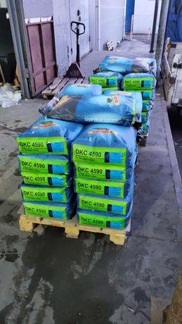 Монсанто ДКС 4590 ФАО 360 насіння кукурудзи семена кукурузы