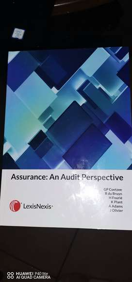 An Assurance: Audit perspective