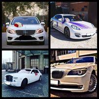 Оренда авто,авто на весілля,свадьбу,трансфери,автобус,весільний кортеж
