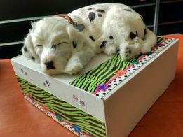 Собачка ДАЛМАТИНЕЦ - прекрасный подарок малышу и взрослому