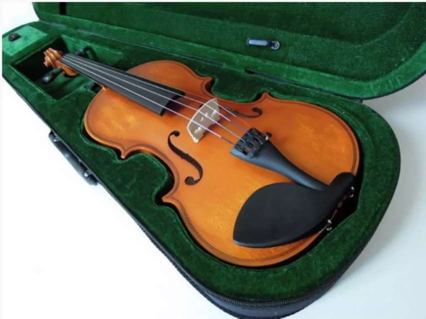 Vanetta Violin with it's case. 0