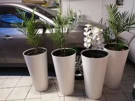 Pots with palms artificial