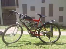 Motorized, petrol bicycles all brand new