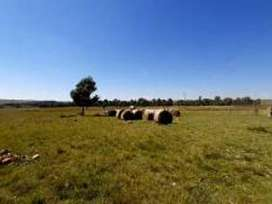 Water rich, 76 hectare Farm for Sale
