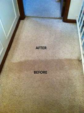 Carpet cleaning combo @ only R2000