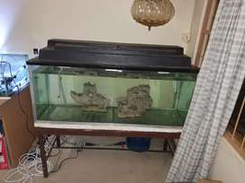 Fish tank 340L for sale