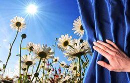 Услуги психолога. работа с травмой, потерей, страхами, фобиями