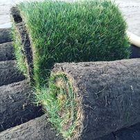 Уход за газоном, аэрация, восстановление газона