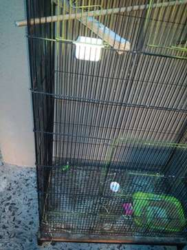 Black iron birds cage with 3bagies