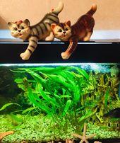Коты керамика