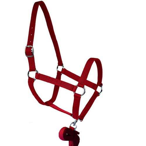 SOFT HALTERS AND LEAD SET 0