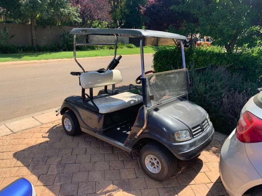Luxury Club Car Golf Cart 0
