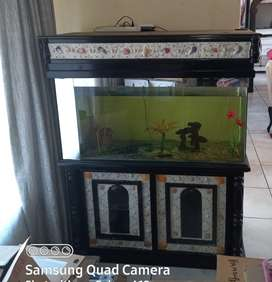 Beautiful large fish tank and built in cupboard