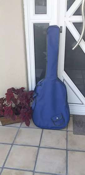 Johnson guitar neat with bag