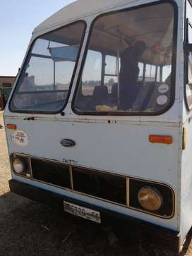 Ford bus