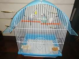 3 budgies birds with cage for r800 neg