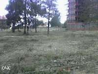 : A commercial(1/4) plot for sale in Ongata rongai Rimpa. 0