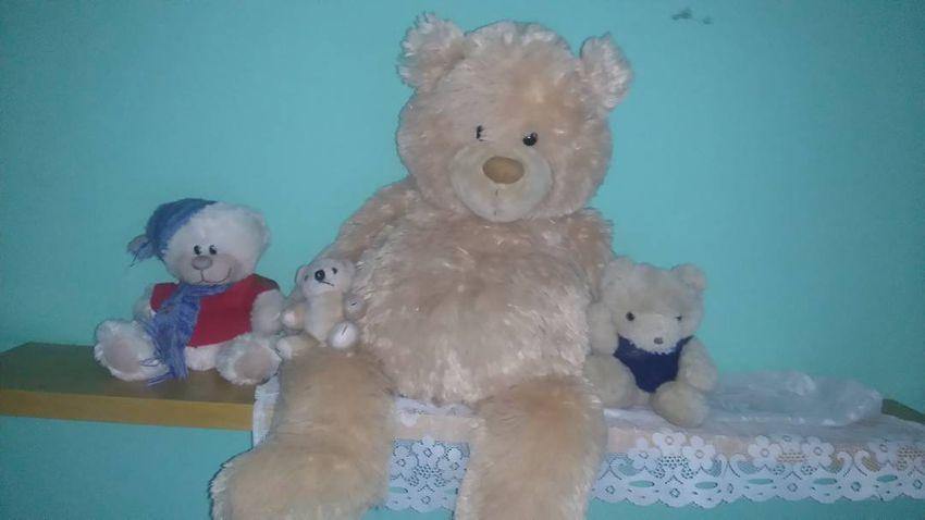 Medvědi rodinka 0