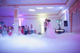 Важкий дим на перший танець! Танцююча панда на ваше свято!