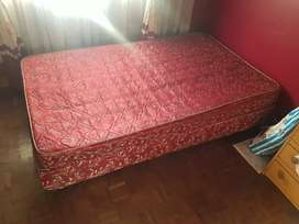 Single bed only for sale