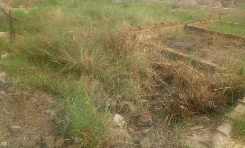 One plot of land for sale at Oyibi 0