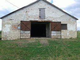 продам або здам в оренду склад (колишня ферма)