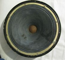 Динамики 25ГДН-4, Диффузор 12 дюймов в корпусе