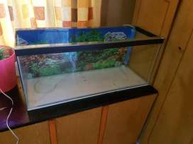 Standard 3 foot Qualipet tank and plastic lid with light