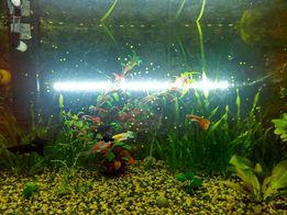 Светодиодные светильники для аквариума. Погружные лампы. Фитолампы.