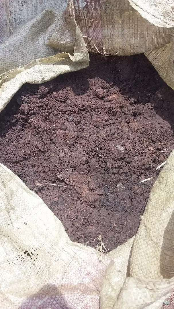 loam soil for flower pots 0