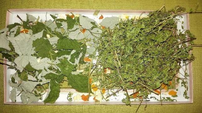 Чайный травяной сбор