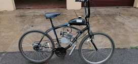 80cc 2stroke bicycle